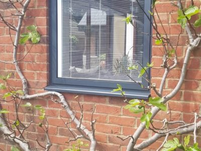 Pretty little aluminium window leading onto a garden.